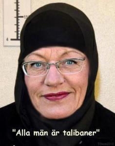 Gudrun Schyman Slöja