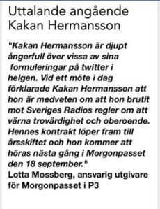 Kakan Hermansson Dementi