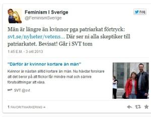 SVT Feminism
