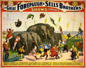 Cirkus Affisch