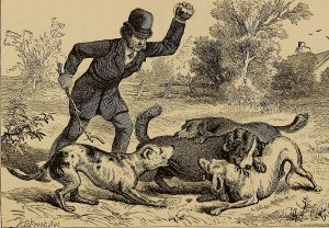 Hundslagsmål
