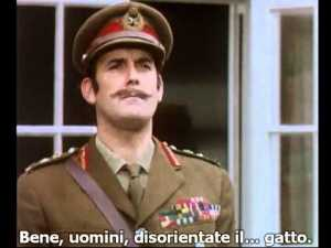 Monty Python Cat